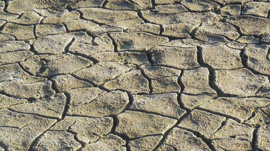 干ばつによって荒れ果てた大地